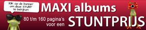 Maxi services forex